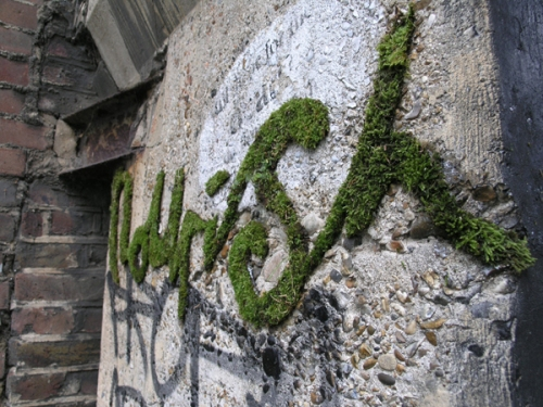 el&abe: Noursh moss graffiti